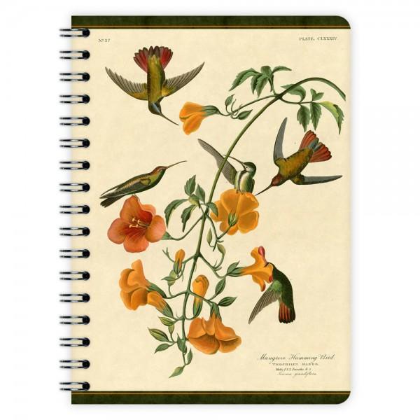 Notizblock Hummingbirds A6